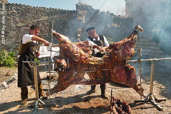 036/40 - Samugheo: Festa de Su Tzichi (724 clic)