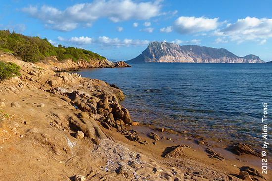 Cala Purgatorio - San teodoro (1092 clic)