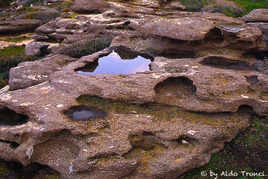 003. Lungo la scogliera  - Calasetta (2004 clic)