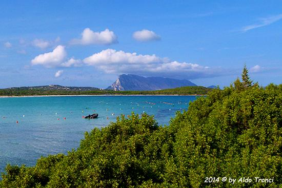 001/13. Spiaggia Lu Impostu - San teodoro (727 clic)