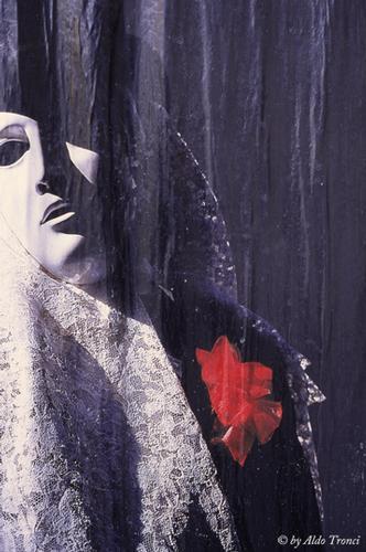 001/30.  La magia del Carnevale - Venezia (2048 clic)