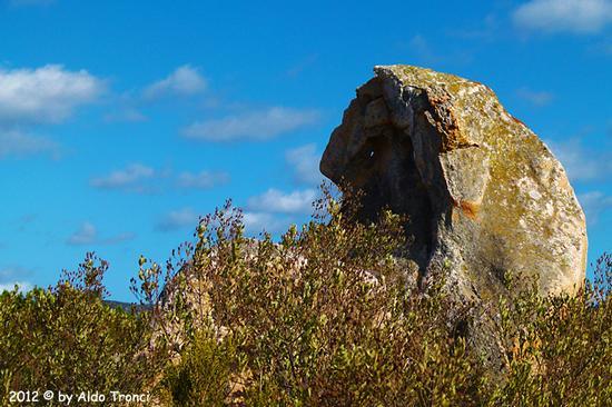024/25. Golfo di Marinella: Graniti plasmati dal tempo, ovvero ... quando la natura si diverte - Porto rotondo (1266 clic)