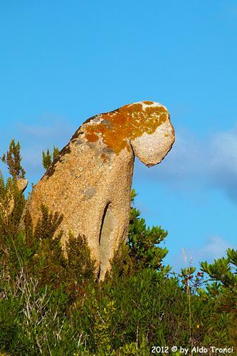 017/25. Golfo di Marinella: Graniti plasmati dal tempo, ovvero ... quando la natura si diverte - Porto rotondo (1522 clic)
