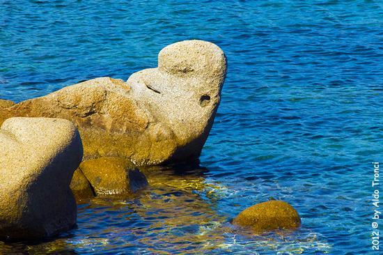016/25. Golfo di Marinella: Graniti plasmati dal tempo, ovvero ... quando la natura si diverte - Porto rotondo (1365 clic)