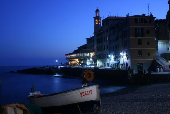 Pace Notturna - Genova (3127 clic)
