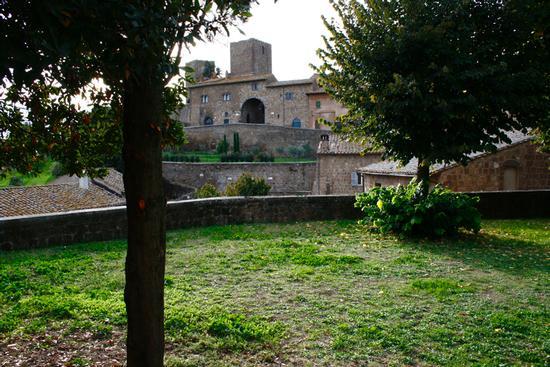 palazzo baronale - Tuscania (2044 clic)