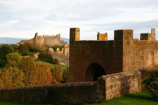 vista panoramica all'interno del parco Torre di lavello - Tuscania (3305 clic)