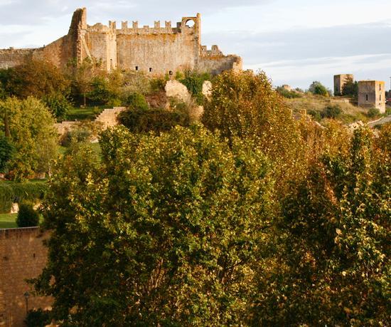 antico palazzo comunle il Rivellino - Tuscania (2289 clic)