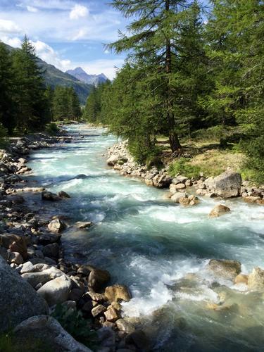 Il torrente Lys - Gressoney la trinitè (774 clic)