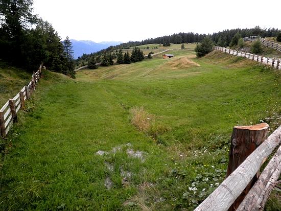 Il verde delle Alpi di Rodengo (2330 clic)