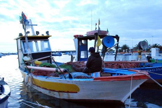 Il pescatore - Porto cesareo (2640 clic)