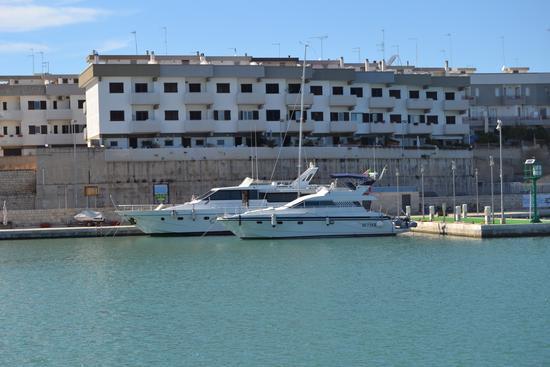 Bisceglie....Porto turistico (345 clic)