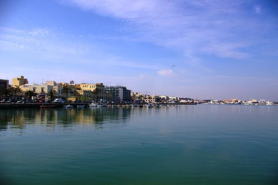 Molfetta:Il porto (1115 clic)