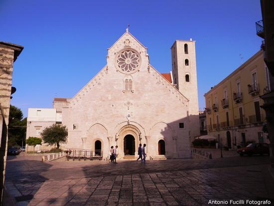 Cattedrale di ruvo di puglia (2645 clic)