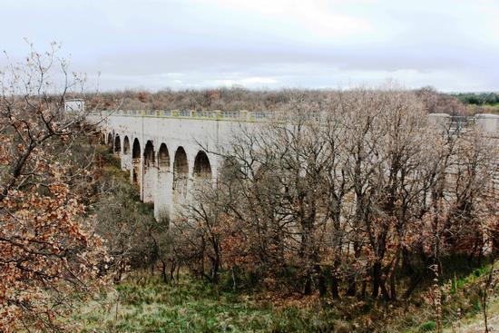 Ponte dell'aqp..Bosco Scoparello - Ruvo di puglia (2885 clic)