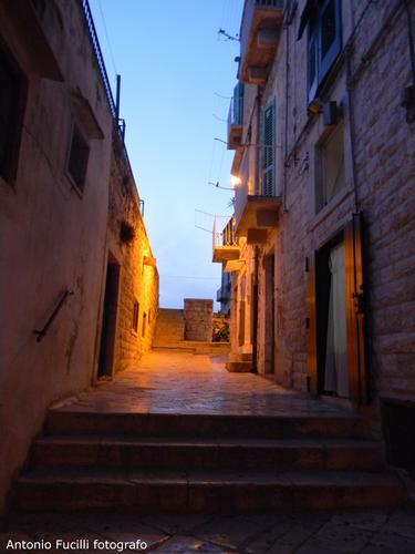 Centro storico - Molfetta (1457 clic)