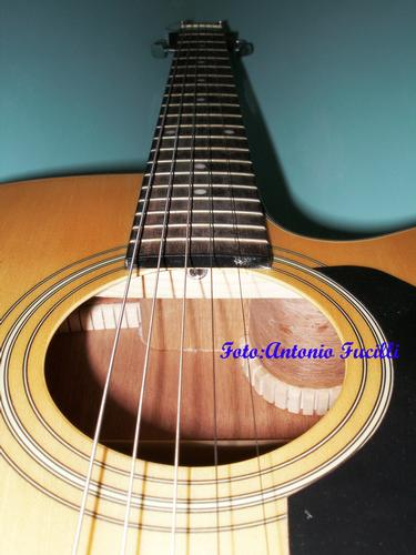 Chitarra a 5 corde - Ruvo di puglia (766 clic)