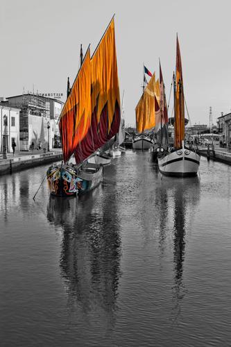 Porto Canale Cesenatico (3729 clic)