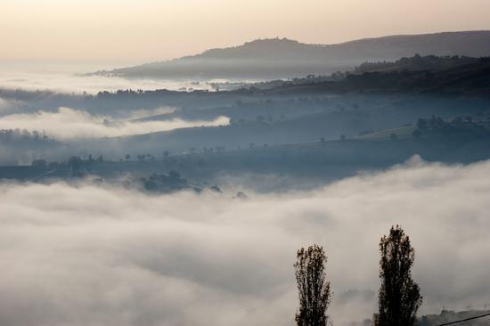 Apiro sopra la Nebbia - Cupramontana (2244 clic)