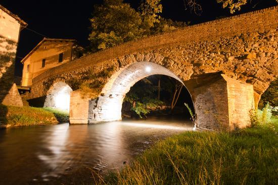 Marche - Macerata - Camerino (942 clic)