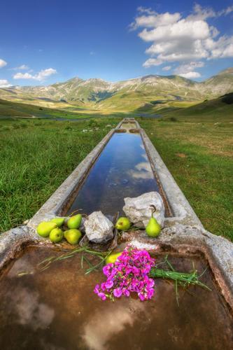 Val Canatra Castelluccio di Norcia (3621 clic)