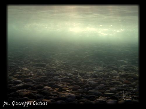 Sottacqua - Fiumefreddo di sicilia (2710 clic)