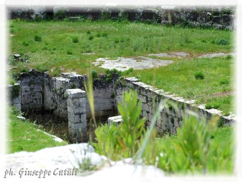 Anfiteatro Romano - Siracusa (1396 clic)