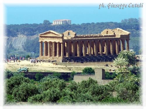 Tempio della Concordia - Agrigento (2181 clic)