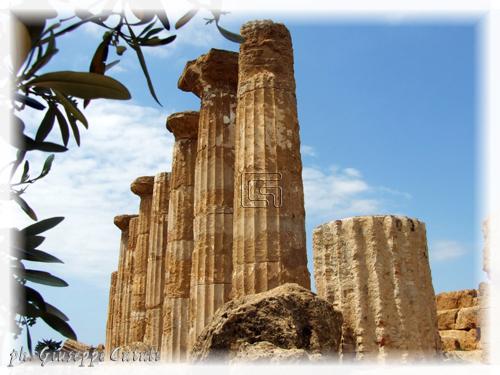 Tempio di Ercole - Agrigento (1806 clic)