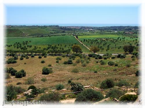 Mare - Agrigento (1712 clic)