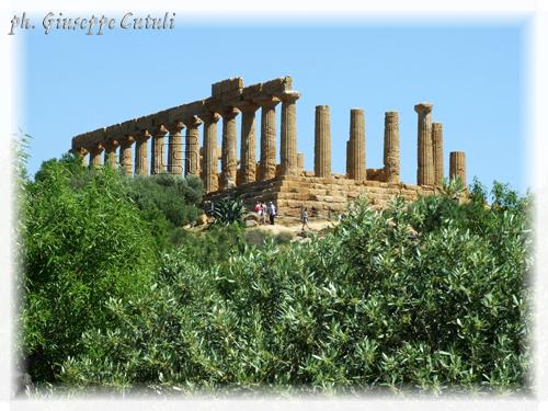 Tempio di Giunone - Agrigento (1918 clic)