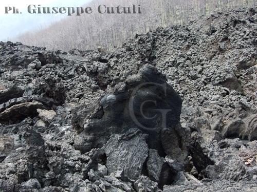 Scultura - Etna (2489 clic)