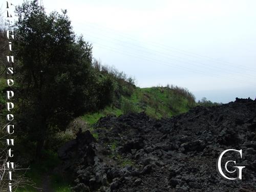 Natura - Etna (2130 clic)