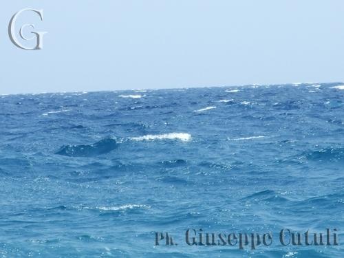 Mare mosso - Fondachello (3702 clic)