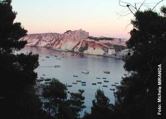 San Domino - ISOLE TREMITI - inserita il 08-Dec-10