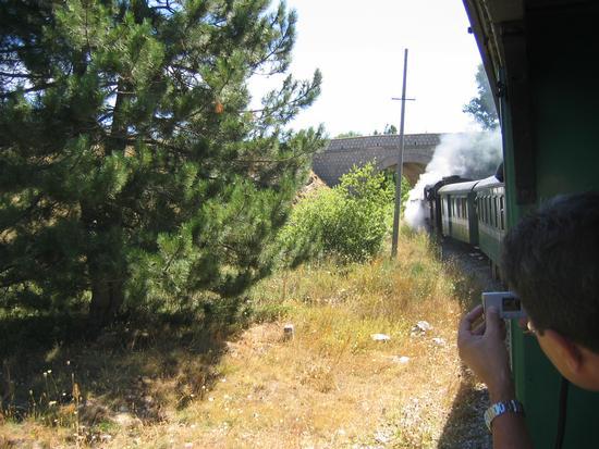 Il Trenino della Sila - Camigliatello silano (2341 clic)