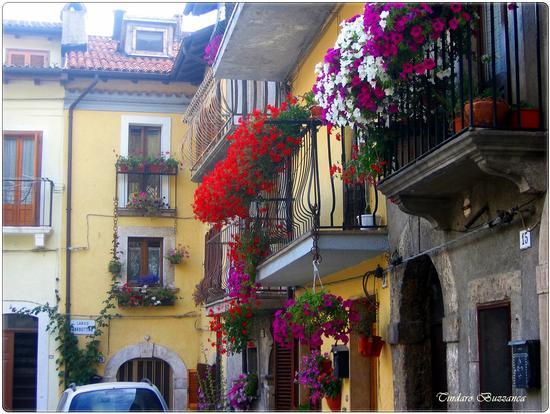 Una caratteristica via cittadina - Pescasseroli (2238 clic)