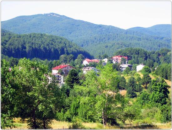 Camigliatello e Monte Curcio - Sila (2295 clic)