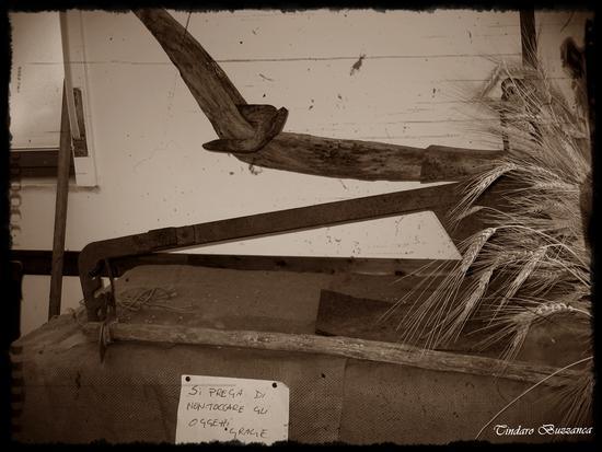 Antichi attrezzi.Aratro in legno e ferro - Gioiosa marea (4154 clic)