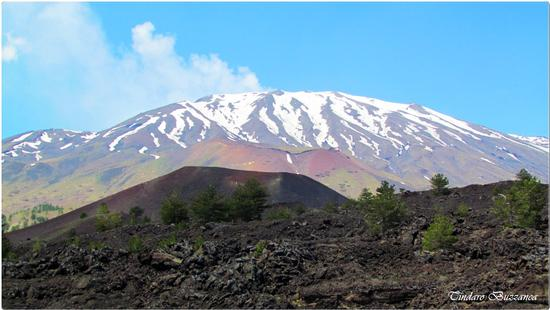 I colori dell'Etna (1728 clic)
