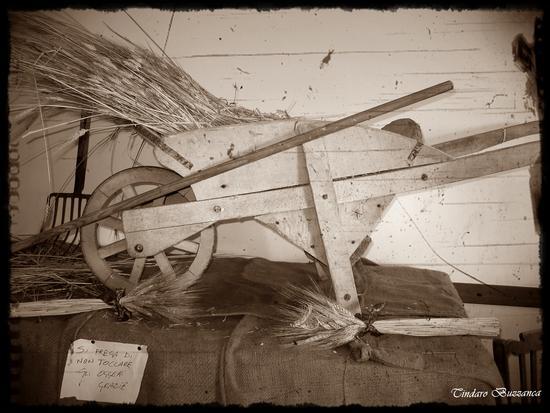 Antichi attrezzi.Cariola in legno - Gioiosa marea (4254 clic)