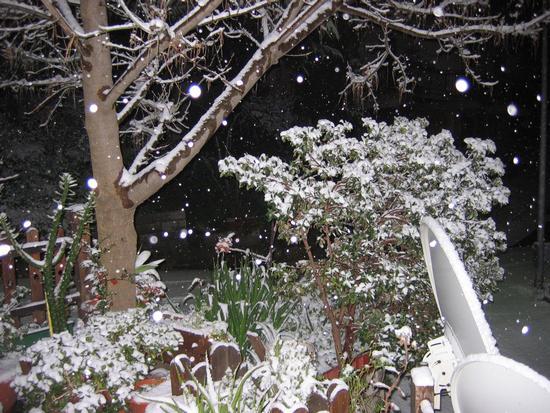 Notte di neve - Gioiosa marea (2568 clic)