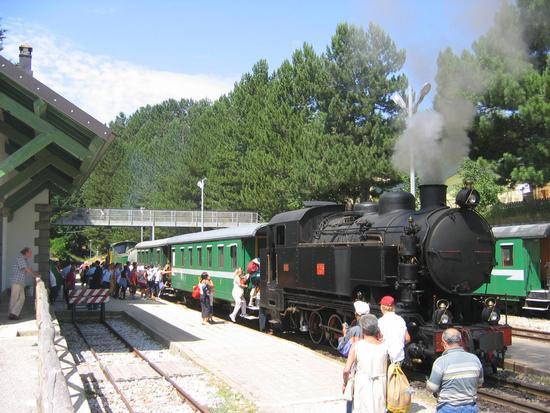 Il trenino della Sila - Camigliatello silano (4163 clic)