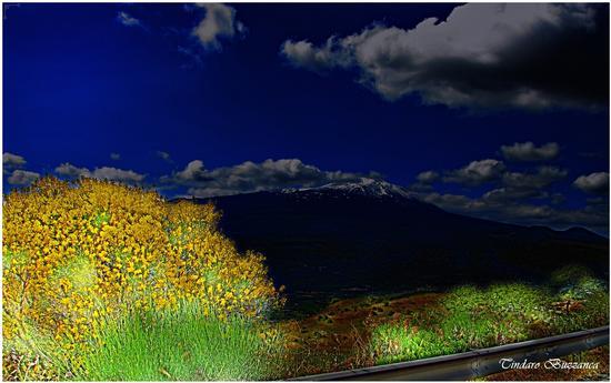 La ginestra e l'Etna - ETNA - inserita il 07-Dec-11