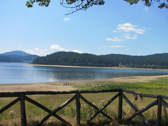 Lago Arvo - San giovanni in fiore (2080 clic)