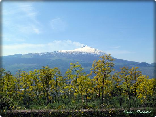 L'Etna a primavera - Santa domenica vittoria (1800 clic)