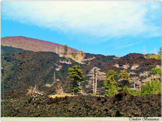 Recente eruzione a Piano Provenzana - ETNA - inserita il 15-Jun-11