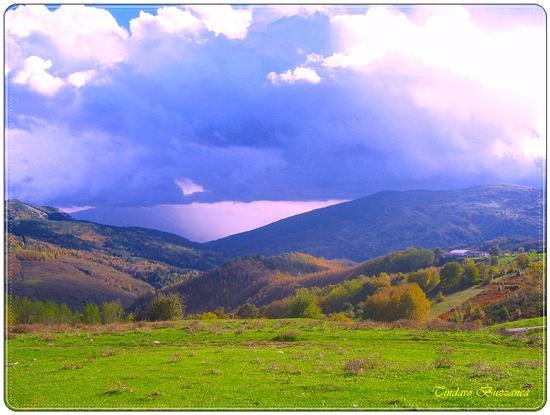 A Floresta - Nebrodi (2259 clic)
