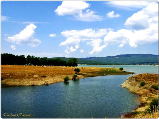 Lago Cecita - Sila (1963 clic)