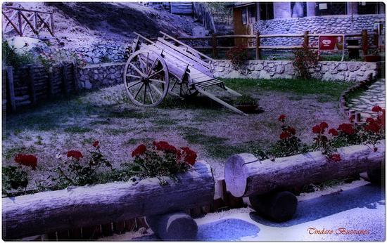 Antico carretto  - Sila (2708 clic)